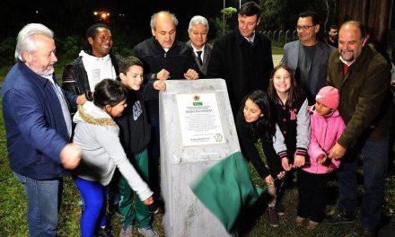 Tatuquara recebe sexto bosque da biodiversidade do Município, o segundo da região