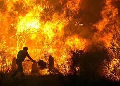 PRAHOVA/Incendiu de vegetaţie uscată în comuna Apostolache