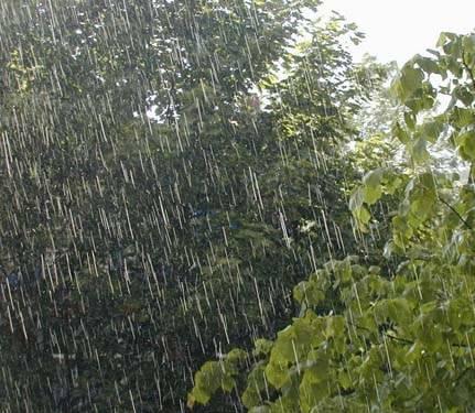Ploi torenţiale, grindina şi vijelii. Vezi prognoza