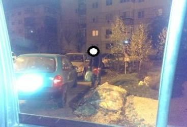 Cu sacoşa şi făraşul, la furat de piatră decorativă din Ploieşti