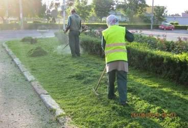 Lucrări de întreţinere a spaţiilor verzi din Ploieşti