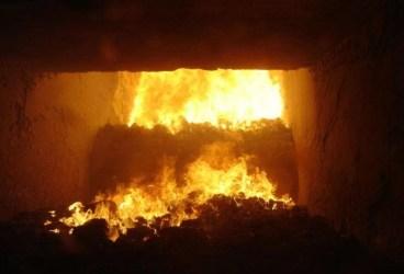 Incinerator de cadavre şi resturi animale, la Ploieşti