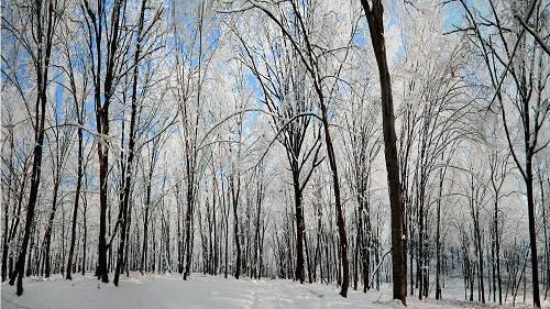 Cum va fi vremea în perioada 27 – 30 ianuarie