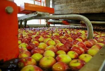 Cursuri de calificare preparator conserve, în vederea angajării la fabrica SC Bio Processing SRL din Vălenii de Munte