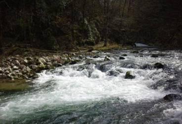 Cât pe ce să se înece în râul Teleajen
