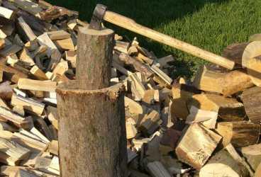 Furt de lemne în zona Ceraşu
