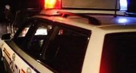 Șofer încarcerat după ce a lovit un cal cu mașina