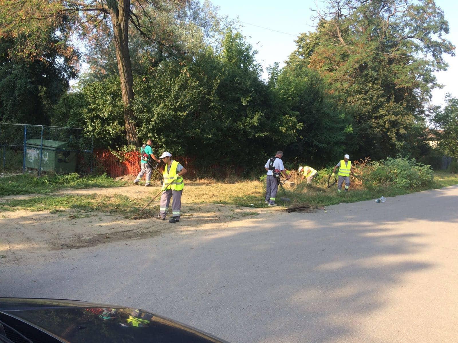 Operatorul Rosal înlocuit cu Blue Planet Services la curățenia domeniului public în Ploiești