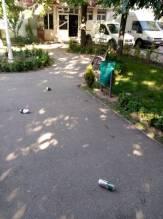 mizerie parc 1_resize