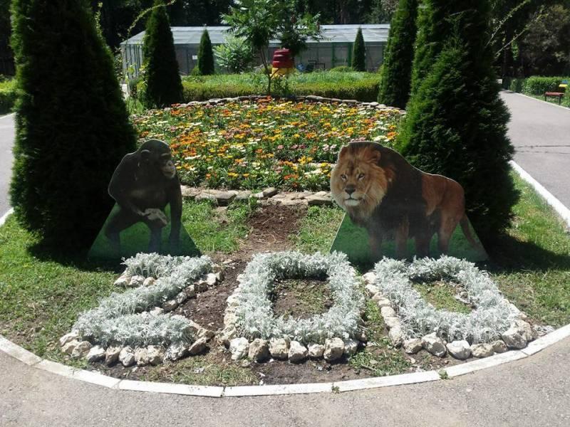 Surpriză pentru primii copii care vor intra miercuri în Grădina Zoo Bucov