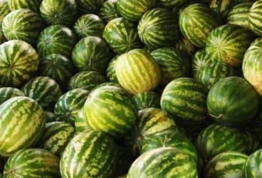 5 tone de legume şi fructe confiscate de la vânzătorii de pe marginea drumului