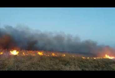 Cod galben de vânt și viscol în Prahova: incendii și copaci prăbușiți