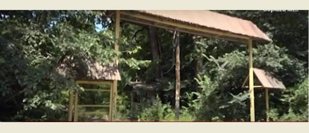 Primăria Păuleşti face eforturi să intre în posesia taberei- ruină