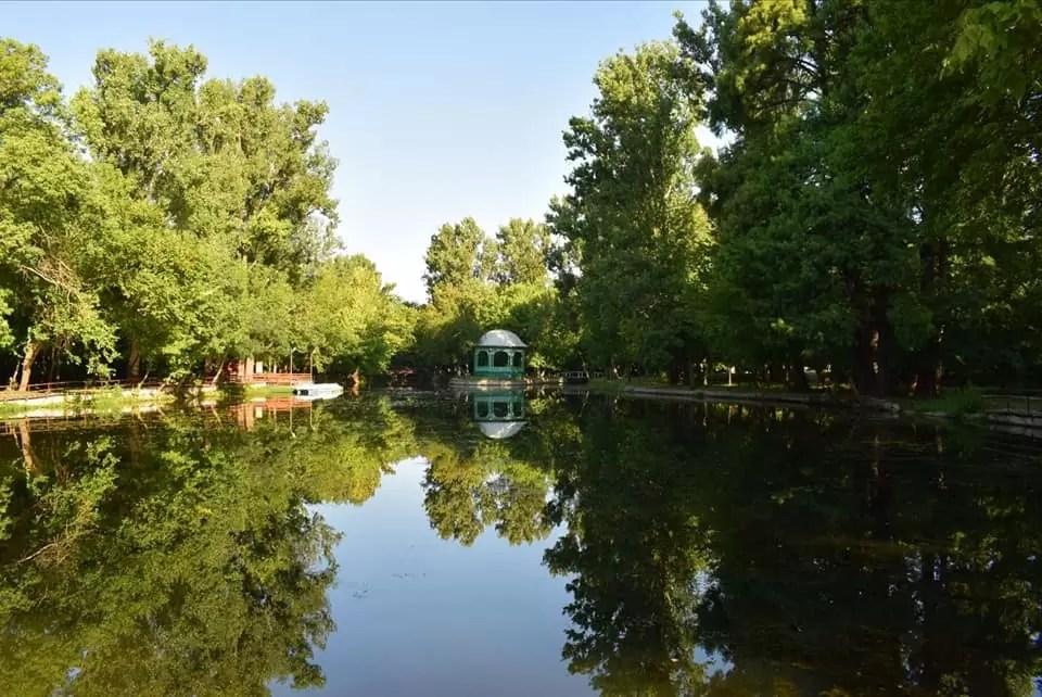 lacul din parcul constantin poroineanu