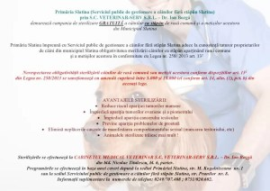 Campanie gratuită de sterilizarea câinilor din Slatina