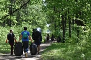 Tinerii olteni curăță pădurea