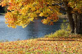 Temperaturi de vară la mijlocul lui septembrie, apoi vremea se răceşte