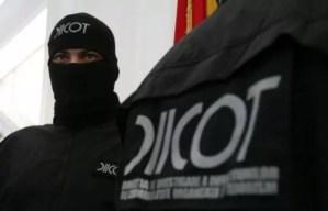 Operațiune de amploare a DIICOT - Vizate, două grupări din nord-vestul țării
