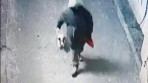 Bărbatul care a spânzurat  un câine în capitală este din Caracal