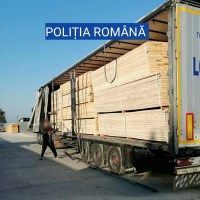 TRANSPORT ILEGAL DE LEMNE DEPISTAT DE POLIȚIȘTII OLTENI