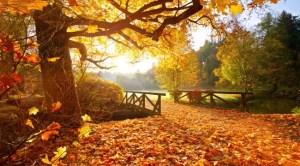 Vremea azi, 3 octombrie - vreme neobișnuit de caldă