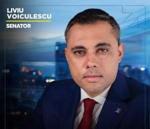 Prima declarație a lui Voiculescu în calitate de senator