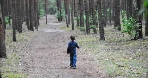 Copil de 6 ani rătăcit în pădure. Polițiștii l-au găsit după 30 de minute de căutări