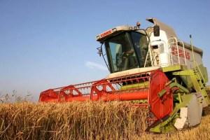 Campania de recoltare a grâului se apropie de final