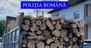 Un bărbat din Argeș a fost prins, de două ori, transportând ilegal material lemnos pe raza localităţii Piatra-Olt