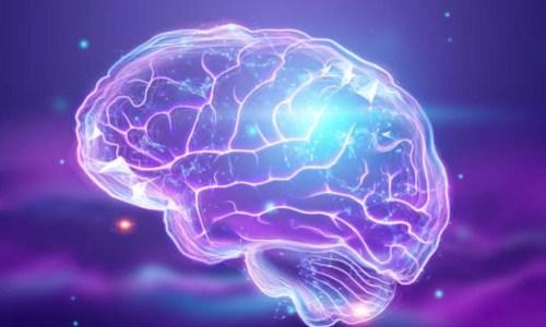 Efektet mahnitëse që ushtrimet fizike kanë në trurin e njeriut
