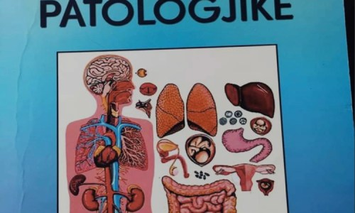 Viruset marrin pjesë në onkogjenezë ashtu që: