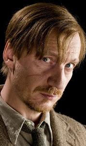 Loup Garou Harry Potter : garou, harry, potter, Regard, Loups, Garous
