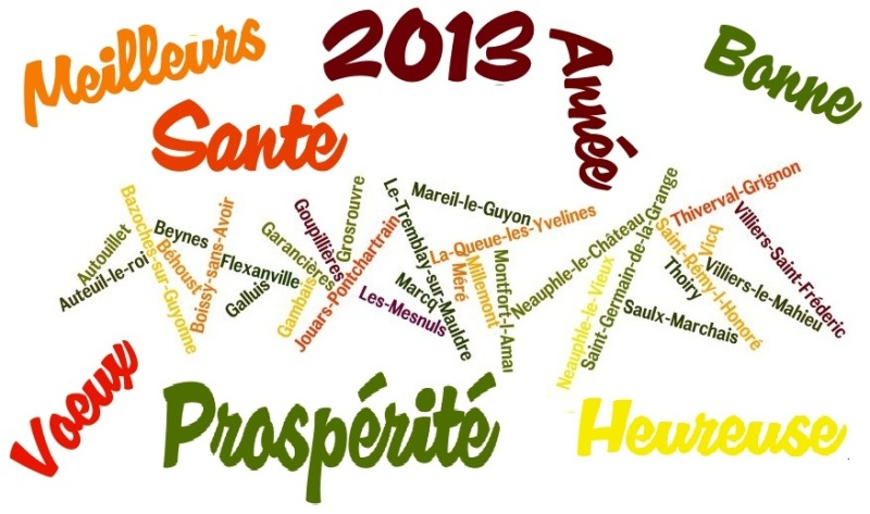 2013_meilleurs-voeux