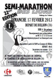 bullion_semi_2013-02