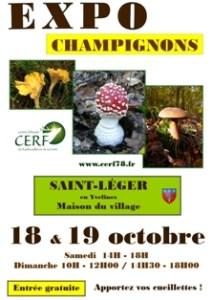 sley_expo-champignons_2014-10