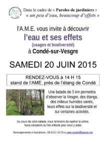 conde-sur-vesgres_eau_2015-06