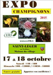 sley_expo-champignon_ 2015-10