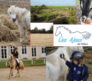 vsf_les-ajouts-villiers_centre-equestre_2016-11