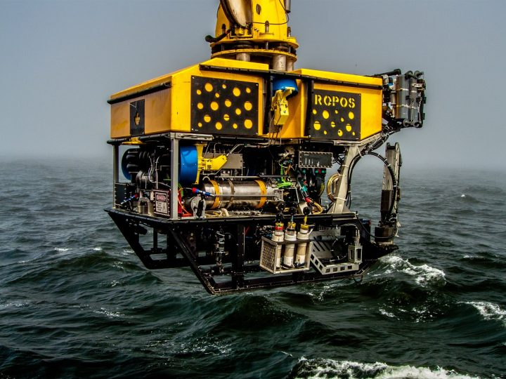 The remotely operated vehicle, ROPOS, operated by the Canadian Scientific Submersible Facility.