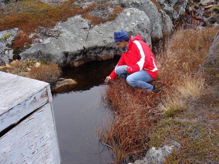 Dr. Atanu Sarkar in Black Tickle, Labrador.