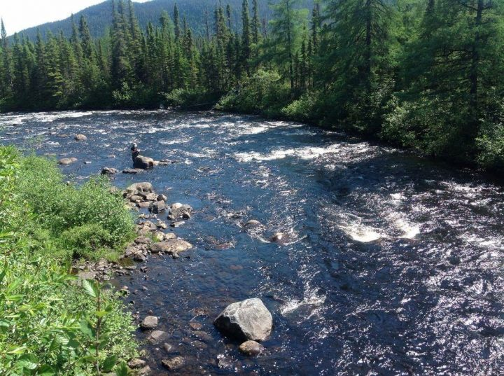 Pictured behind a rock downstream, Lianna Rice, research co-ordinator, takes notes after installing thermographs in a Labrador river.