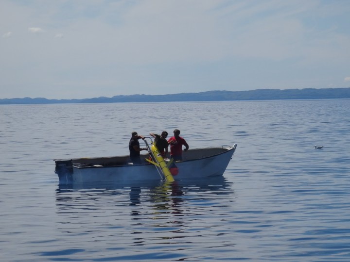 Part of the research study included fieldwork off the coast of Newfoundland and Labrador.