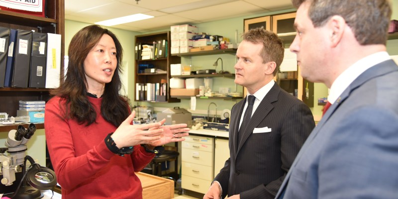 From left are Dr. Qi Yuan, Seamus O'Regan and Nick Whalen during a tour of Dr. Quan's lab.