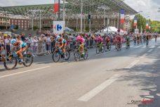 Tour de France 2018 (Reynald Valleron) (19)