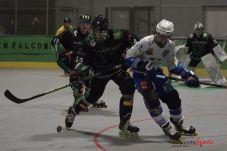 Green Falcons vs Reims (Reynald Valleron) (24)