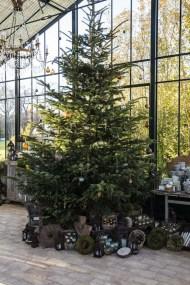 Gaztelur - Sapin de Noël