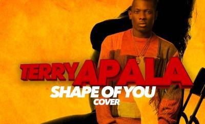 Terry Apala – Shape of You