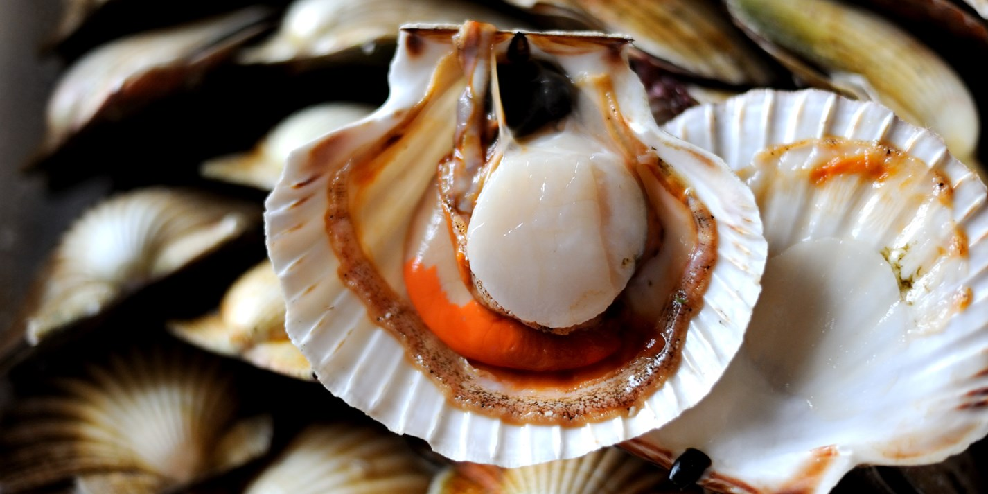 Chinese Seafood Recipes