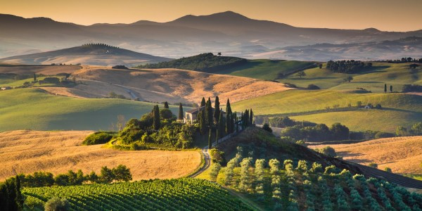 The best wines in Tuscany Great Italian Chefs