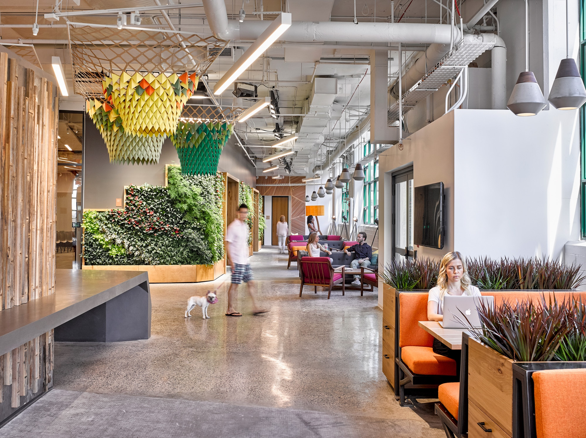 Etsy Crafts a Better Workplace to Meet the Living Building Challenge  gbd